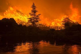 Horizontal, FIRES AND FIRE-FIGHTING, NATURAL DISASTERS, ORANGE COLOUR CAST, fire, Katastrophen und Unfälle
