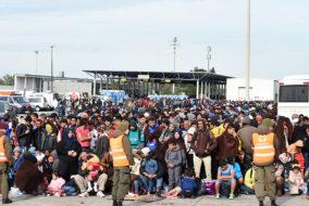Flüchtling, Asyl, Schlepper, Ungarn, Grenze, Bundesheer, Politik