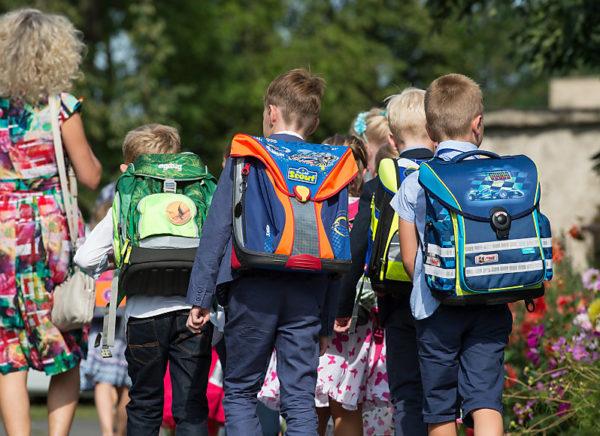 Schüler, Erziehung, rucksack, Schule, erster, Tag, schulweg