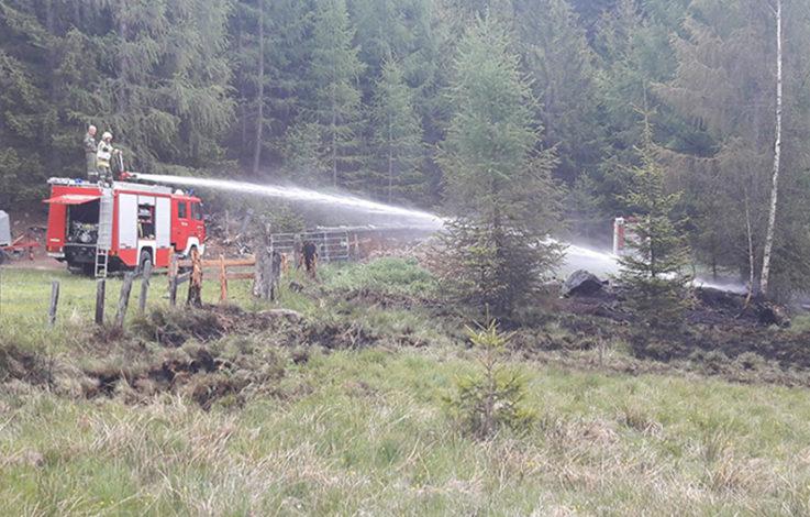 Feuer in Waldstück ausgebrochen