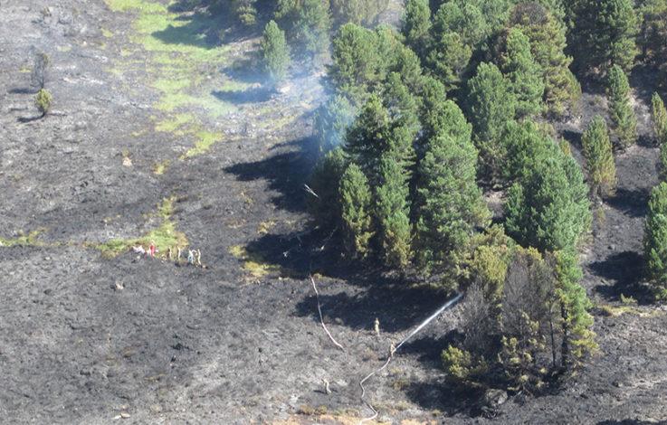 Warnung: Erhöhte Waldbrandgefahr durch offene Feuer