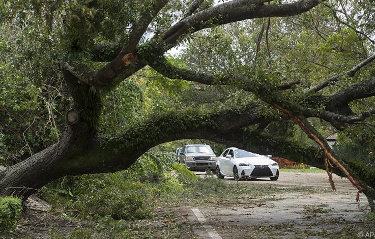 """Abgeschwächte """"Irma"""" zieht weiter – Schon elf Tote in USA"""