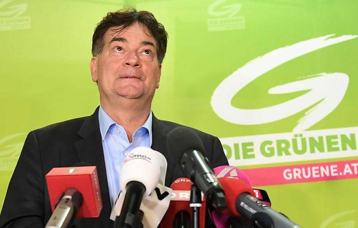 Grüne wollen sich nach Wahldebakel neu aufstellen