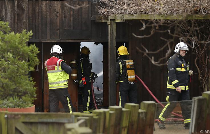 London: Erdferkel stirbt bei Brand im Zoo